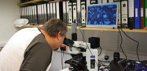 Tim Wilkinson uses an Olympus BR11 microscope to display the switching of a lenslet array in his laboratory.
