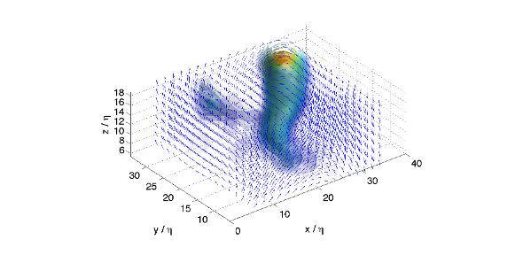 Worm-like structures in turbulence