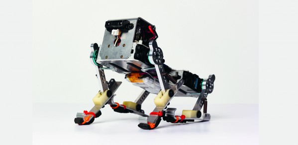 'Puppy' is a running robot dog developed by Dr Fumiya Iida's team
