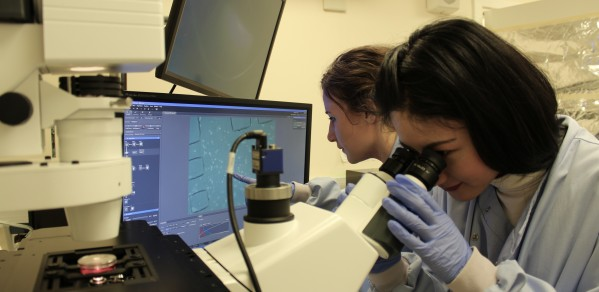 Research students Ye Liu and Lizzie Gill in Dr Huang's group can be seen imaging living human cells in a thumb-sized microfluidic chip under a light microscope.