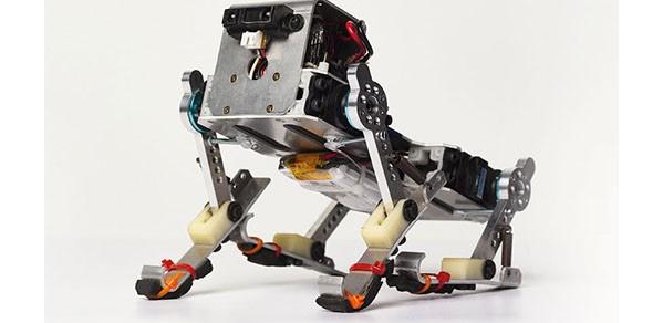 Puppy, a running robot developed by Dr Fumiya Iida's team.