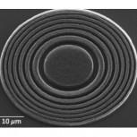 Carbon nanotube Fresnel lens
